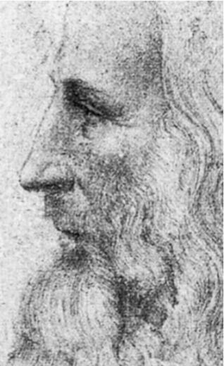 Portrait Leo